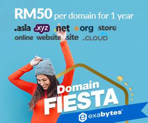 Domain Fiesta